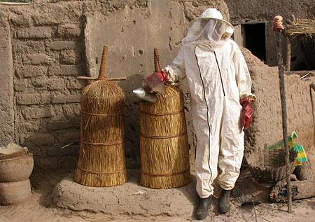 apiculteur malien
