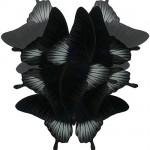 papilio-lowi