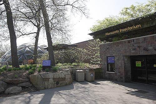 insectarium de Monsanto au zoo de St louis
